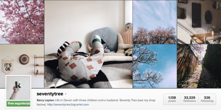 Mis Instagramers favoritos: seventytree | na sua lua